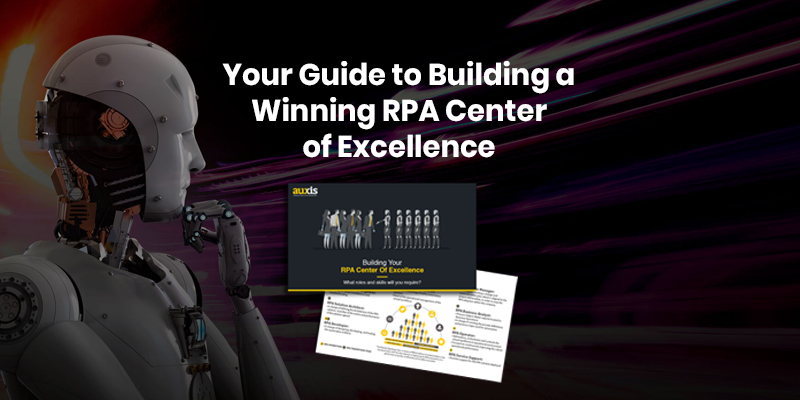 RPA Center of Excellence Roles & Responsibilities